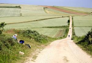 Pilgrims on Camino